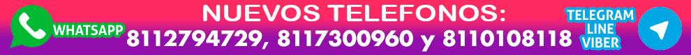 8117300960 y 8118916790